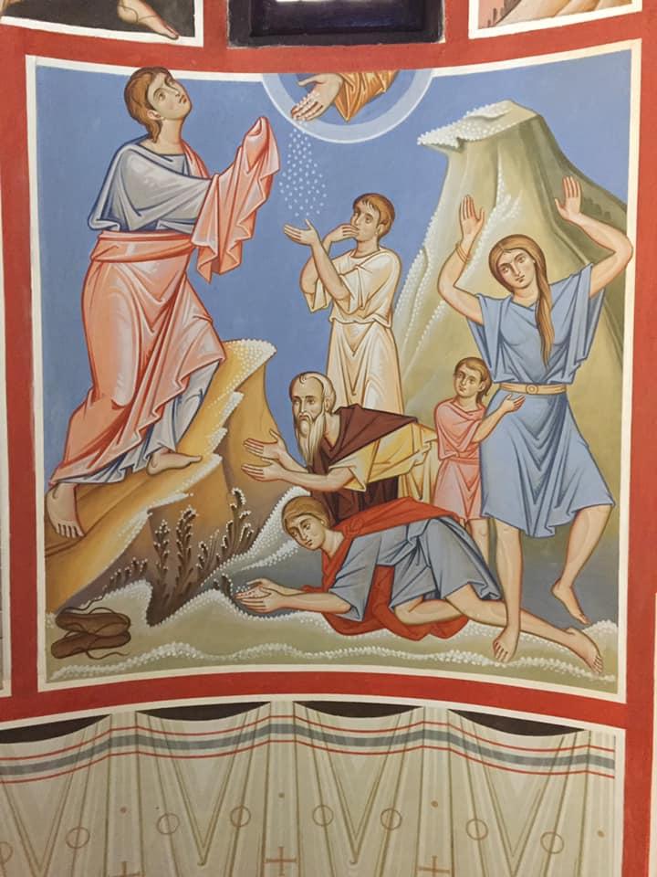 """Al mattino c'era uno strato di rugiada intorno all'accampamento. Quando lo strato di rugiada svanì, ecco, sulla superficie del deserto c'era una cosa fine e granulosa, minuta come è la brina sulla terra. Gli Israeliti la videro e si dissero l'un l'altro: """"Che cos'è?"""", perché non sapevano che cosa fosse. Mosè disse loro: """"È il pane che il Signore vi ha dato in cibo (Esodo, 16, 13b - 15)"""